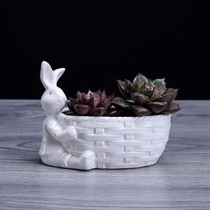 Porcellana Bunny Figurina pianta succulente pianta pianta decorativa desktop ceramica coniglio fioriera piantatore giardino ornamento artigianale accessori Y200723