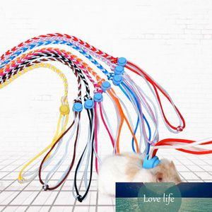 1.4 M 2.0 M Ayarlanabilir Pet Hamster Tasma Koşum Halat Gerbil Pamuk Halat Koşum Kurşun Yaka Fare Fare Hamster Pet Cage Leash