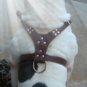 Collar Adjustable Spiked Studded Rivets PU Leather Dog Pet Harness Walking Collar Leash for Pitbull Mastiff Hot Sale Q1122