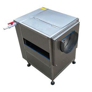 Hochwertige Pinseltyp Obst Gemüse Peeling Maschine Gemüse Obst Waschmaschine Obst Gemüsereinigungsmaschine