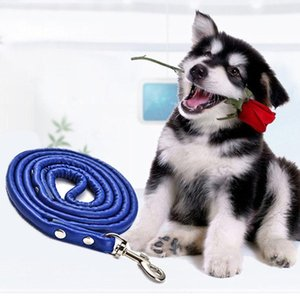 Puppy Collar Leash Pet Products Pet Dog Cat Puppy Leash Traction Rope Multi Colors PU Outdoor Walking Rope Dog Portable Leash Belt DH0590