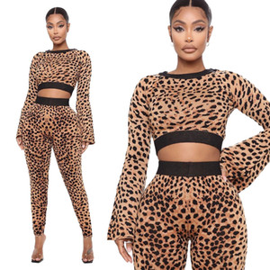 Leopard Print Womens Two Piece Outfit Long Sleeve Crew Neck Panelled 2PCS Set Fashion Casual Female Clothing