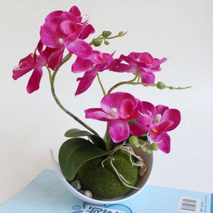 Artificial Butterfly Orchid Potted plants silk Flower with Plastic pots moss Home Balcony Decoration vase set wedding Decorative