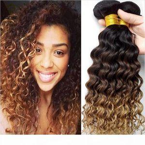 Peruvian Deep Curly Wave 1B 4 27 Honey Blonde Ombre Human Hair 3Pcs Three Tone Human Hair Weave Cheap Peruvian Human Hair Bundles