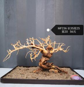 DRIFTWOOD الحوض شجرة الطحلب موس الخشب المشهد الوقواق خشبية الجذر بونساي C1115