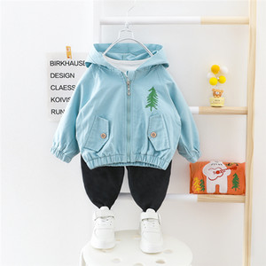 HYLKIDHUOSE Baby Girls Boys Clothing Sets 2020 Spring Hooded Coats Pants Casual Style Toddler Infant Clothes Children Clothing Z1214