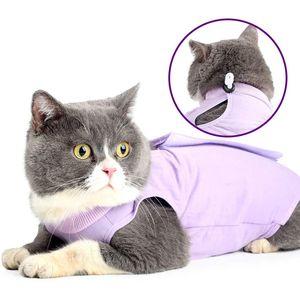 دعوى التعافي المهنية القط لجراح البطن أو أمراض الجلد تنفس بعد ارتداء الجراحة للحيوانات الأليفة JK2012PH