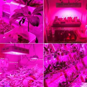 Nuevos estilos 2000W DUAL chips 380-730nm Full Light Spectrum LED Planta Lámpara de crecimiento de la planta blanca interior LED Grow Lights