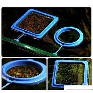 Nicrew Aquarium Fütterungsring Fischtank Floating Food Tray Feeder Square Circle Accessoire Wasserpflanze B Qyldoi Sports2010