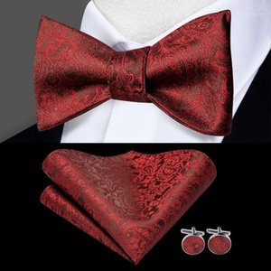 Bow Ties Hi-Tie Classic Men's Wedding Party Tie Self Set Butterfly For Men Luxury Paisley Floral Red Blue Gold Bowties1
