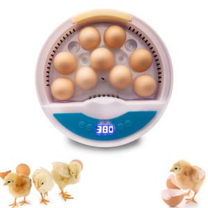 Purificateurs d'air Mini 9 Œufs Incubateur Poulature Brooder Numérique Température numérique Couverteuse Couleur de canard au poulet Pigeon