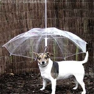 بارد إمدادات الحيوانات الأليفة مفيدة شفاف pe مظلة مظلة صغيرة الكلب مظلة المطر العتاد مع يؤدي الكلب يحافظ على الجافة الجافة مريحة في المطر 533 r2