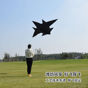 vipNew J-15 stealth aircraft kite beginner children breeze easy to fly large adult three-dimensional long tail fighter