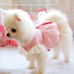 New summer dog clothes pomeranian cat pet princess dress little star lace spring and summer dress