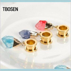 Tbosen Dangle Ear Plugs Piercing Tunnels Crystal Eardrop Body Jewelry Steel Screw Earring Gauges Expander Women Fashion Gift 2Pc Ndsjk 341Yp