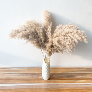 Pampas Grass Fluffy Dried Natural Reed Flowers Bouquets Contains Colored Plastic Vase Christmas Home Wedding Decor