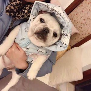 Cute French bucket vt dog cloth winter wear hat cotton coat pet tide brand Teddy