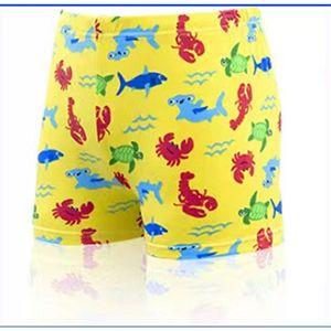 Детские купальники плоский угол милый мультфильм динозавров плавательные штаны 2-10 лет