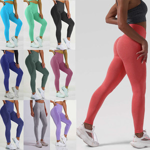 tracksuits Shark knitted gym seamless Leggings yoga pants for women