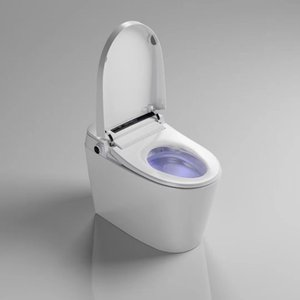 Bathroom tank-less electric automatic intelligent toilet seat with remote control smart WC bidet