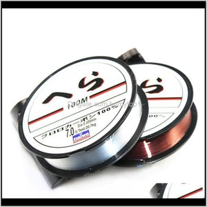 100M Nylon Fishing Line Strong 0.10Mm - 0.50Mm Monofilament Japanese Material Fishing Wire Fishing Fluorocarbon Fly Line Biqfb Vjmbp