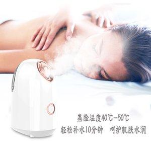 Face Steaming Beauty Instrument Nano Mist Pulvérisateur Vapeur à la vapeur chaud Spray Hot Spray Instrument Humidificateur domestique Faire face à la vapeur Instrument