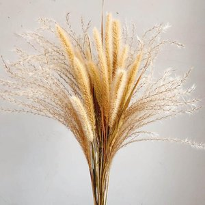 Decorative Flowers & Wreaths Natural Dried Bouquet Lagurus Ovatus Dog Tail Grass Bunch Real Flower Pampas For Home Wedding Decoration