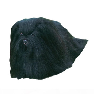 Dog Mannequin For Grooming Training Synthetic Model Dog For Pet Groomer