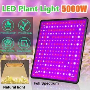 256 LEDs 5000W Grow Light Full Spectrum LED Plant Grow Light Indoor Plant Growing Greenhouse Garden Lights