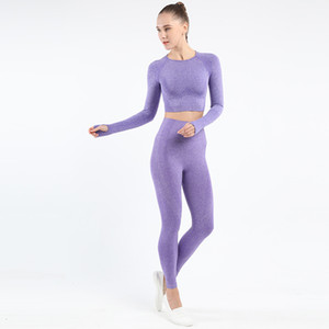 2021 New Women Seamless Lulu Set Fitness Sports Suits Gym Cloth Yoga Long Sleeve Shirts High Waist Running Leggings Workout Yp072 Tyjr