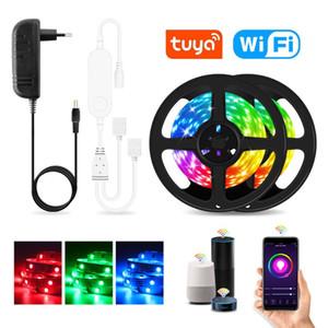 WiFi LED Strip Lights Work With Alexa Google Assistant Voice Control 12V RGB LED Lights Strip With Tuya Smart Life APP