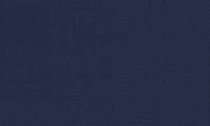 210060-5065 Pure wool high count elastic worsted fabric [Navy Plain W98 Ly2](FSB)
