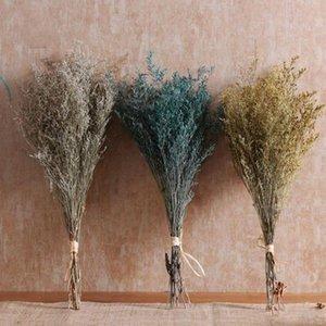 Flor seca natural Muebles para el hogar Decoración de la decoración de flores de arte heno Secado ramas hierba amor babysbreath valentine regalos wy1127