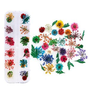 1 Box Natural Dried Flower Diy Resin Glue Filling Home Decoration Articles Nail Accessories Making Craft Diy Acc jllsGf