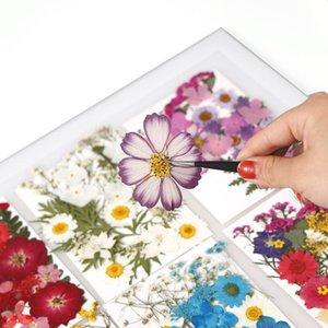 1 saco de flores secas resina uv decorativo flor natural adesivos 3d seco beleza decalque mofo epóxi diy enchimento qylxkl
