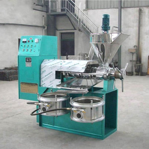 Factory Price Oil Press Machine Palm Kernel Coconut Expeller Cotton Seed Extraction Machine