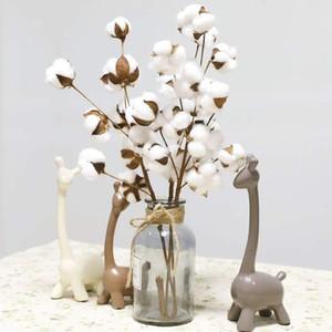 1 adet 10 kafa doğal pamuk dalları kurutulmuş beyaz sahte çiçekler Farmhouse tarzı kaynaklanıyor Doğal olarak ponpon yapay dolgu çiçek