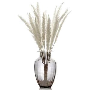 15pcs naturels sèches petits pampas herbe blanche / rose couleur mariage fleurs décor rouge bouquet fleurs artificielles blanchiment style rétro