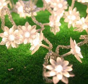 Fairy 5M Lotus Fleurs LED String Guirlande Lumière Noël Nouvel An de mariage Maison de vacances à la maison Luminaria Décoration Lampe