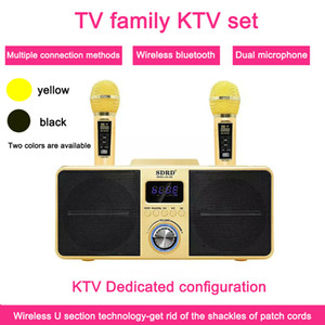Hot SD-309 Dual Wireless Microphone Bluetooth Speaker Mobile Wireless Karaoke Stereo Black 30W SDRD Speaker Set