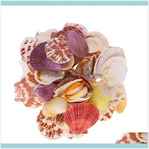 Novelty Décor Home & Gardennovelty Items 1 Bag About 250G Natural Shell Conch Ornaments Delicate Mixed Sea Style Diy Po Frame Materials Show