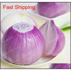 100 Pcs Onion Seeds Vegetable 95% High Germination Vegetable Chinese Allium Cepa Healthy Vege jllmcz garden_light