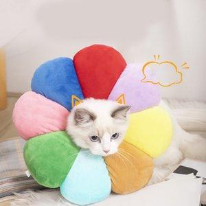 Pet Elizabethan Circle Collars Cat Collars Animali domestici Anti Modo Leccata e graffiature Cats Forniture Assistenza infermieristica