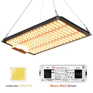Quantum Board LED Crescer Light Samsung LM301B Diodes Meanwell Driver Completo Spectrum Crescer Lâmpada Para Plantas Interior Estufa