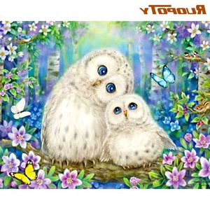 RUOPOTY Owl Painting By Numbers For Adults Unique Gift 40x50 Frame On Canvas Modern Home Living Room Decoration Wall Artcraft