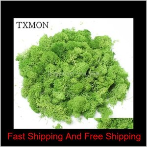 1000G Hhigh Quality Simulation Green Plants Immortal Fake Flower Moss Grass Living Room Decorative Wall Diy Flower Decoration 1029 Ngy Rsnix
