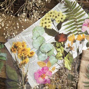 Gift Wrap 6Pcs Set Flower Leaves Scrapbook Stickers DIY Decoration Sticker Handmade Invitation Card Scrapbooking