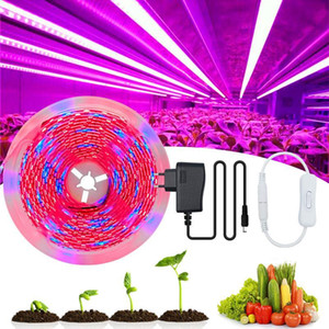 LED Plant Grow Strip lights Full Spectrum Flower phyto lamp Waterproof for Greenhouse Hydroponic Growth Light +Power adapter
