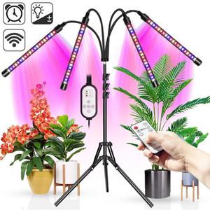 LED Grow Light Tent 5V USB Phytolamp For Plants Garden Full Spectrum Phyto Lamp For Home Indoor Vegetable Flower Seedling