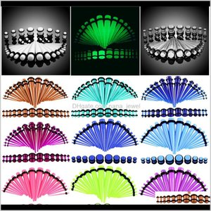 Acrylic Ear Gauge Taper Kit With Plug Double O-Ring 14G-00G Ear Stretching Kit Flesh Tunnel Expansion Piercing Jewelry Bxwml Ag5Dh
